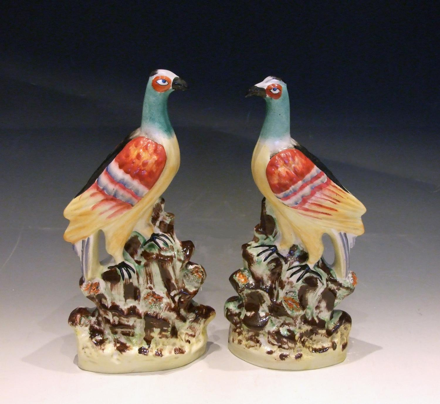 Rare large pair of Staffordshire birds