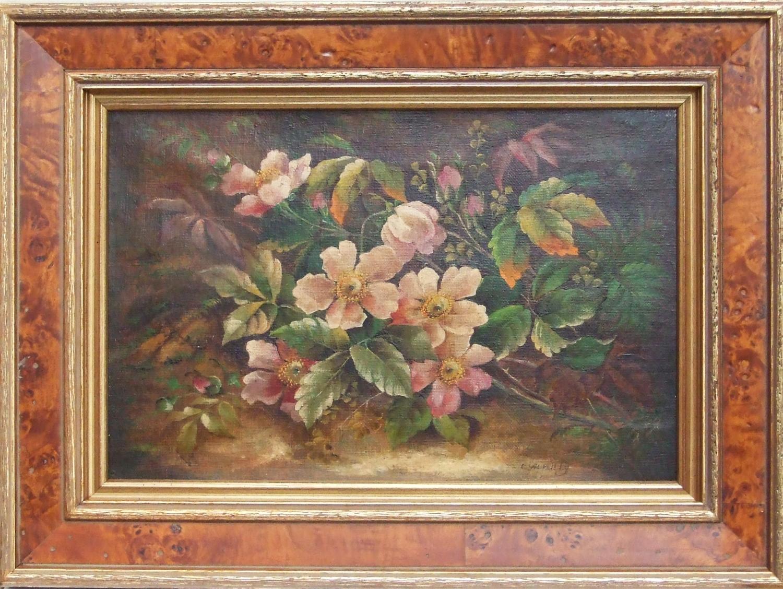 Pair of flower studies