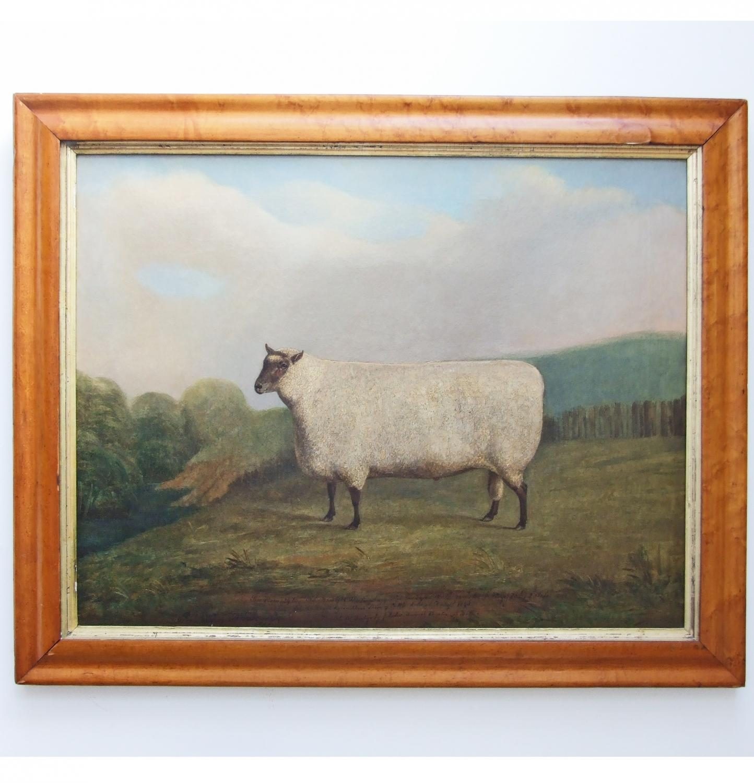 Large prize ram portrait by J. Loder of Bath