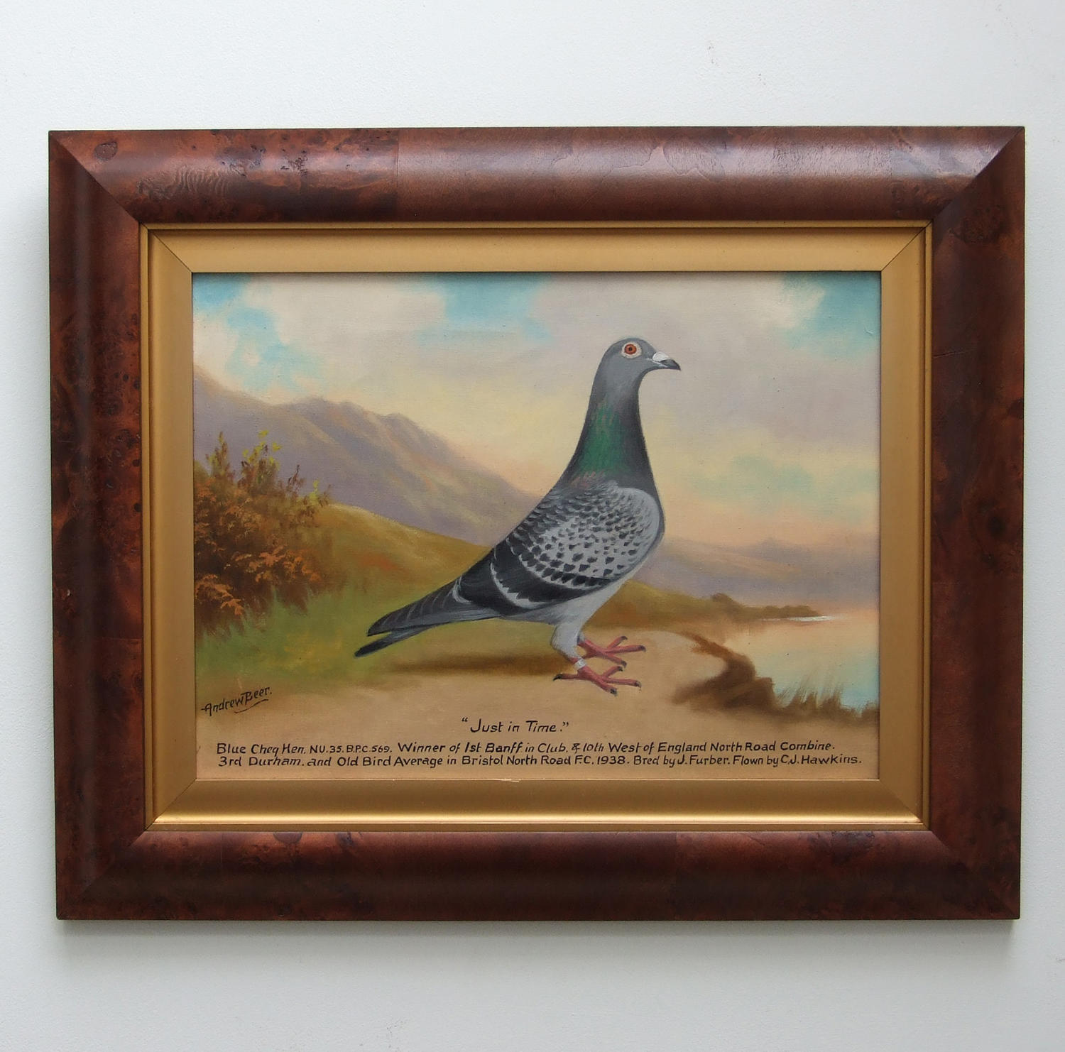 Oil portrait of pigeon by Andrew Beer