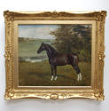 Horse portrait by Allen Culpepper Sealy - picture 1