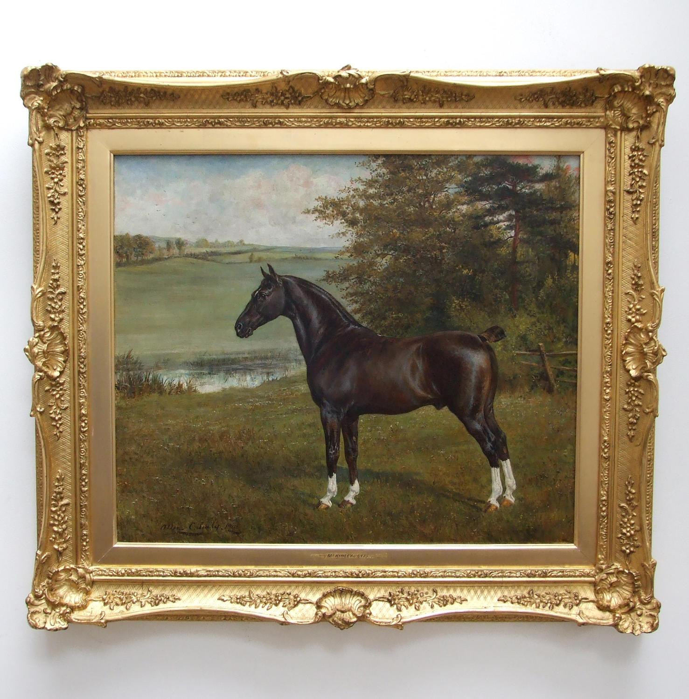 Horse portrait by Allen Culpepper Sealy