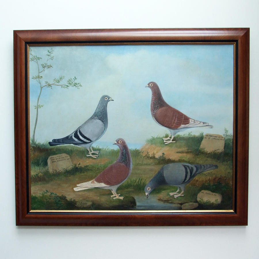 Rare oil painting of four show pigeons by J. Lecosty