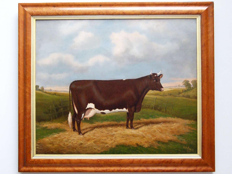 Fine oil portrait of a prize cow by William Albert Clark.