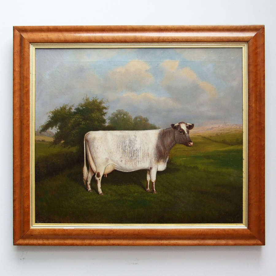 Fine oil portrait of a prize cow by William Albert Clark