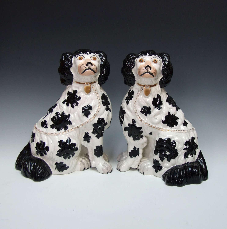 Wonderful pair of large 'chubby' Staffordshire black & white spaniels